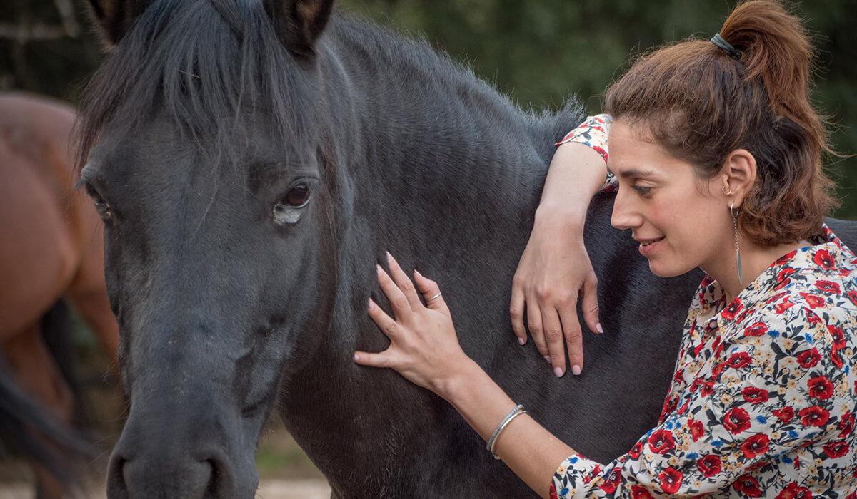 Growandchange Blog Paarden Coaching
